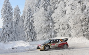 Picture Winter, Snow, Forest, Citroen, DS3, WRC, Rally, Rally, Side view