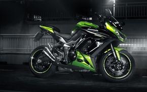 Picture green, Kawasaki, profile, sport bike, Z 1000 SX