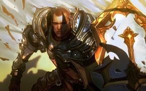 Picture shield, blizzard, diablo 3, Crusader