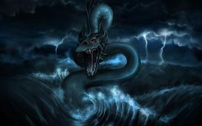 Wallpaper dragon, figure, water