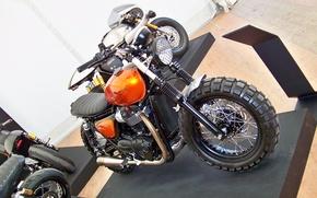 Picture triumph, motorbike, t120, crambleur