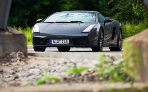 Picture grey, supercar, front view, Lamborghini, edo competition, Gallardo, lamborghini gallardo superleggera