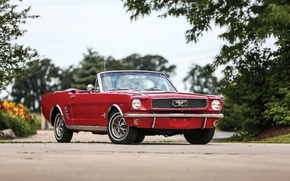 Wallpaper Mustang, Ford, Mustang, Ford, 1966