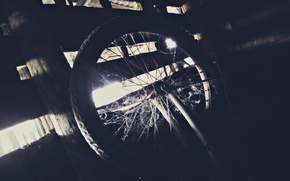Picture cold, web, wheel, twilight