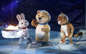 Picture sadness, fire, sadness, ice, bear, bear, leopard, show, bars, Bunny, the audience, Zayats, view, Sochi …