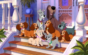 Picture dogs, house, cartoon, cartoon, puppies, heroes, porch, Lady, characters, Lady and the Tramp, Hobo, Jock, …