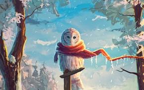 Picture winter, snow, owl, bird, art