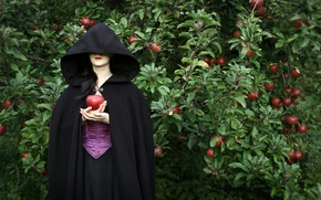 Picture girl, background, apples