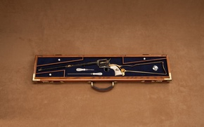 Wallpaper revolver, case, butt, instrumento