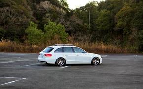 Picture Audi, white, wheels, 2.0 T
