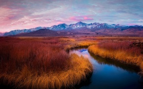 Picture grass, landscape, mountains, nature, river, dawn