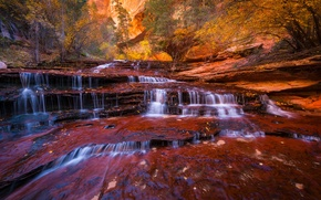 Picture waterfall, trees, Utah, state, foliage, cascade Archangel, Zion national Park, stream, stream, river, rocks, autumn, ...