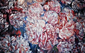 Picture flowers, painting, Peonies, single