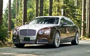Picture continental, bentley, mansory, flying_spur_7