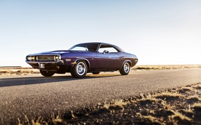 Picture Dodge, Challenger, muscle car, 1970, lunchbox photoworks