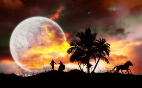 Picture the sky, palm trees, Night, horse, pair, planet.