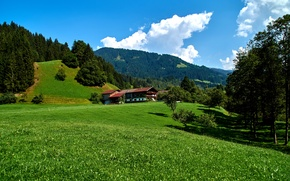 Picture the sky, grass, clouds, trees, mountains, house, field, Germany, Sunny, forest, meadows, Obernau