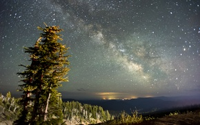 Picture the sky, stars, trees, landscape, nature, the milky way
