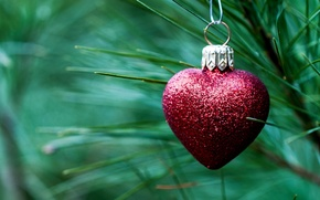 Picture needles, red, toy, heart, spruce, branch, New Year, Christmas, tree, decoration, Christmas, heart, holidays, New ...