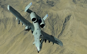 Picture aircraft, flying, shark, fang, rocket, Thunderbolt II, A-10 Thunderbolt II, machine guns, missiles, hunting, bombs, …