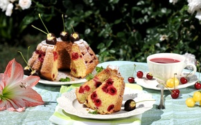 Picture summer, cherry, tea, cakes, cupcake, there