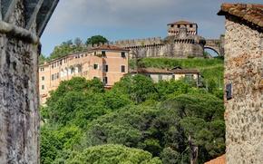 Picture trees, landscape, house, Italy, Liguria, Sarzana