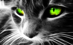 Picture cat, cats, art, green eyes