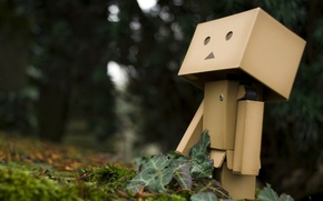 Picture forest, doll, danbo
