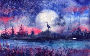Picture grass, sunset, river, tree, bird, the moon, the evening, silhouette, painted landscape