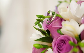 Picture flowers, ring, buds
