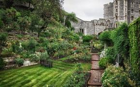 Picture trees, flowers, castle, England, track, plants, shop, shrub, summer garden