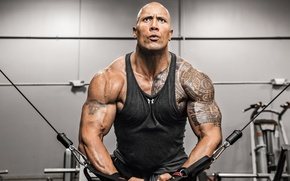 Picture machine, tattoo, Dwayne Johnson, the rock, workout, gym