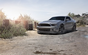 Picture the sky, grey, mustang, Mustang, ford, shelby, Ford, front view, Shelby, grey, gt500, tinted