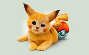 Picture eyes, kitty, art, red, pokemon, Pikachu