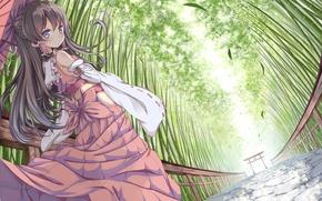 Picture girl, bamboo, art, touhou, hakurei reimu, ging1993