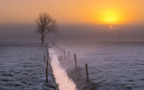 Picture field, fog, channel