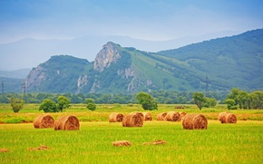 Picture field, grass, trees, mountains, nature, stack, hay, straw