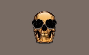 Picture color, skull, sake, gold