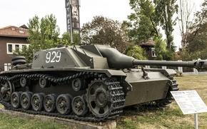 Picture green, tank, world war II