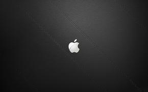 Picture sign, apple, minimalism, texture, logo, logo, minimalism, texture, sign, brand, 2560x1600, brend