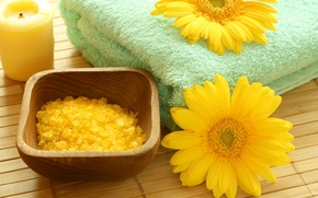 Picture flowers, candle, towel, bowl, crystals, yellow, yellow, flowers, Spa, Mat, candle, salt, spa, salt, towel, …