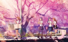 Wallpaper Park, spring, Sakura, lights, tie, form, Schoolgirls, flowering, friend, lipetski