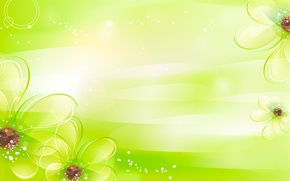 Picture flowers, green, petals