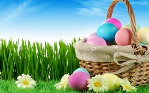 Picture grass, basket, eggs, spring, Easter, Easter, egg