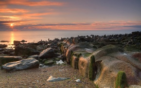Picture sea, beach, the sun, stones, dawn, moss
