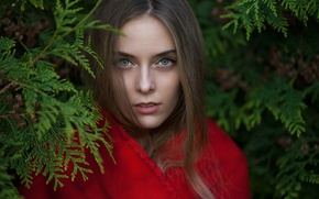 Picture look, girl, branches, face, sweetheart, model, portrait, light, red, brown hair, beautiful, the beauty, nature, ...