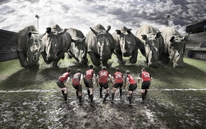 Picture art, rugby, Rugby