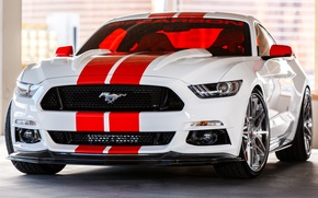 Picture Mustang, Ford, Carbon