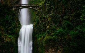 Picture greens, mountains, bridge, waterfall, stream