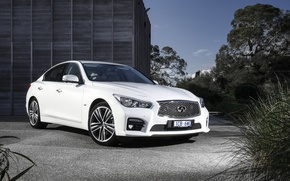 Wallpaper infiniti, white, Q50, Infiniti, sedan